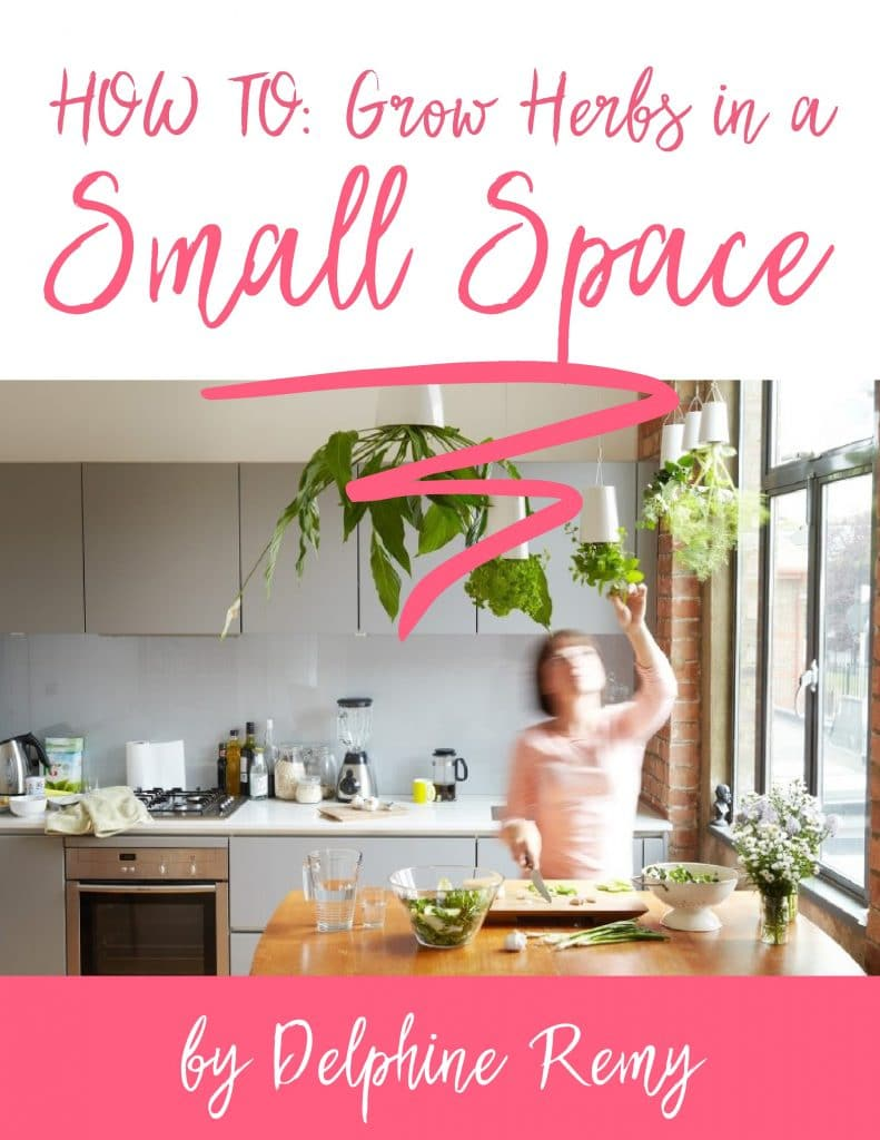 EBook- Grow Herbs in Small Space